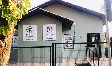 Fisioterapia veterinária jaguariuna